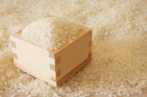 吉野家の【お米の産地】どこ?「おいしい・安心・安い」三拍子揃ったお米とは?
