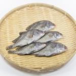 スシローは【魚買取り】サービスをしている?買い取りの価格相場など解説!