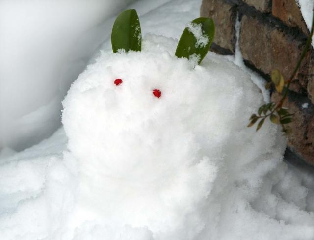 雪見だいふくが小さくなったのはいつから?事実や原因を解説!